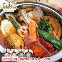 アールティー スープカレー スープ、野菜は別パックタンドリーチキンに野...