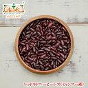 レッドキドニービーンズ(ミャンマー産) 1kg / 1000g 業務用,常温便,豆,Red kidney beans,レッドキドニー,ラジマ,Rajma,レッドロビヤ,Red Lobiya,赤インゲン豆