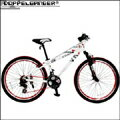 送料無料【DOPPELGANGER(R)26インチ自転車903 Differential】