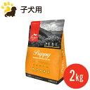 【正規品】オリジン パピー(2kg)(幼犬用)【総合栄養食】 ドッグフ...