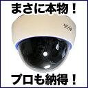 ダミーカメラ 防犯カメラ ダミー 監視カメラ DAM001-...