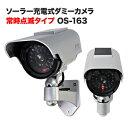 ダミーカメラ 防犯 カメラ ダミーカメラ 防犯 ダミー 防犯カメラ 監視カメラ 屋外 防雨 赤外線 明暗センサー ソーラパネル ダミーカメラ フェイクカメラ DAM008-OS-163
