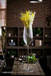 ビッグワイングラス/シャンパン