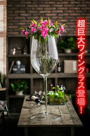 ビッグワイングラス/白ワインタイプ