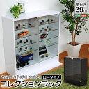 コレクションラック 深型ロータイプ【コレクションケース/コレクションボード/コレクションラック ルーク】