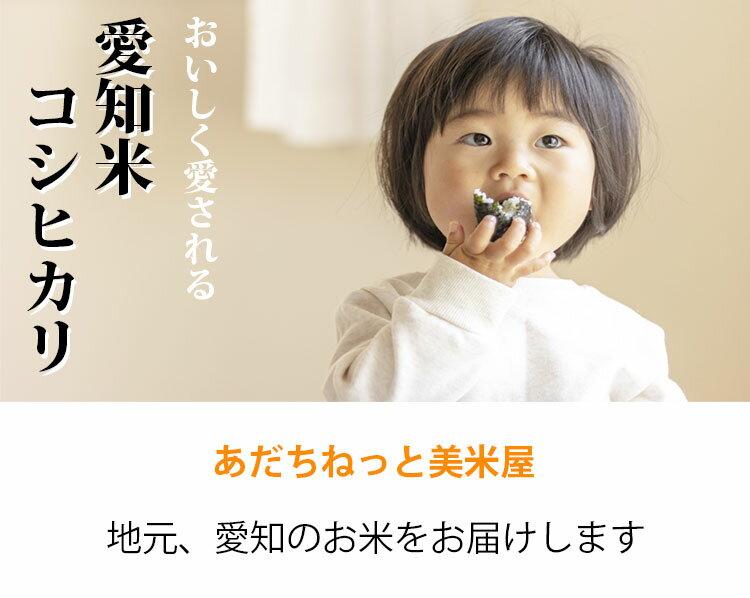 無洗米5kgコシヒカリ愛知県産令和元年産コシヒカリお米5キロ安いあす楽送料無料【沖縄、配送不可】