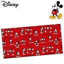 ミッキーマウス レジャーシート 2人用(1畳サイズ) チアフル Disney Mickey Mouse ディズニー レジャーマット 遠足 旅行 敷物 VS3 【RCP】