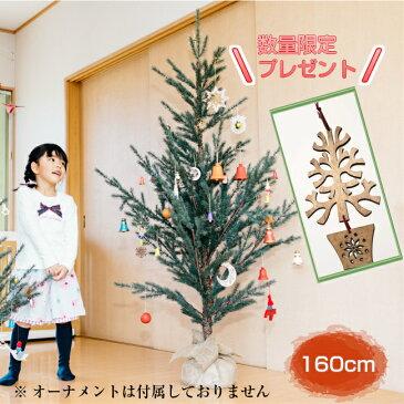 アドベントカレンダー付 Hogewoningホーゲボーニング社 クリスマスツリー・160 ヌードツリー ブラザージョルダン モミの木 もみの木 北欧雑貨 Xmasインテリア 天然に近い ディスプレイ クリスマス おしゃれ 大きい Christmas