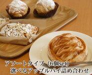 【送料別】いろいろな味が楽しめる6個セットアソートタイプのアップルパイ!【お取り寄せ】【ギフト】【青森】