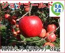 ジョナゴールド ほほえみ(訳あり) 約3kg 県認証無し ★酸味のきいた濃い味のりんご★ り...