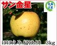葉とらずりんご 訳あり 【金星 ほほえみ 約3kg 県認証無し】 キズ有り きんせい りんご リンゴ お手軽 無袋 青森 林檎 リンゴ 葉とらず ワケあり