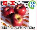 お菓子作りに人気の紅玉!小ぶり真っ赤な樹上の宝石のようなりんご青森 りんご 訳あり【紅玉 10...