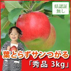 葉とらずサンつがる 秀品 約3kg 県認証無し ★果汁たっぷりで甘い香りの葉とらサンずつがる...