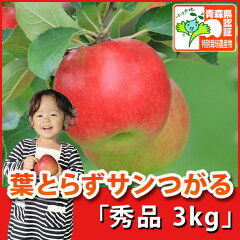 葉とらずサンつがる 秀品 約3kg 県認証有り ★果汁たっぷりで甘い香りの葉とらずつがる★ ...
