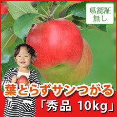 葉とらずサンつがる 秀品 約10kg 県認証無し ★果汁たっぷりで甘い香りの葉とらずサンつが...