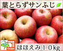 葉とらずサンふじ ほほえみ(訳あり) 約10kg 県認証有り りんご リンゴ 家庭用 減農薬栽培 特別栽培農産物 青森 国産 認有り