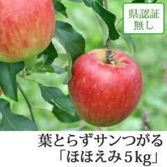 葉とらずサンつがる ほほえみ(訳あり) 約5kg 県認証無し ★果汁たっぷりで甘い香りの葉と...