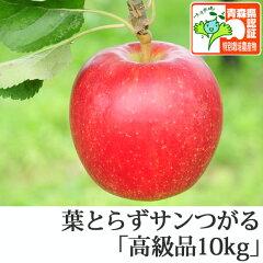 葉とらずサンつがる 高級品 約10kg 県認証有り ★果汁たっぷりで甘い香りの葉とらずサンつ...