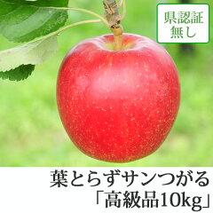 葉とらずサンつがる 高級品 約10kg 県認証無し ★果汁たっぷりで甘い香りの葉とらずサンつ...