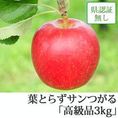 葉とらずサンつがる 高級品 約3kg 県認証無し ★果汁たっぷりで甘い香りの葉とらずサンつが...