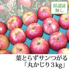 葉とらずサンつがる 丸かじり 約3kg 県認証無し ★果汁たっぷりで甘い香りの葉とらずサンつ...