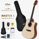 【送料無料】Takamine 《タカミネ》 SA261 N アコースティックギター [SA-261]