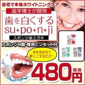 歯を白くするsu・po・n・jiスポンジ歯みがき/歯を白くするスポンジ/ホワイトニングケア/コーヒー/ワイン/タバコ/黄ばみ汚れ/