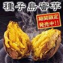 【黄金の蜜が味わえる!】通常の4倍以上の糖度でほっこりな秋♪【種子島蜜芋3kg】【種子島密芋...