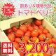 【送料無料】【規格外品】今話題のミニトマト★北海道名寄産訳ありトマトベリー【サイズ不揃い】…