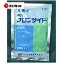 フロンサイド水和剤 100g 対疫病殺菌剤 農薬 石原バイオサイエンス