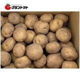 キタアカリ(北あかり) 5kg箱 北海道産 じゃがいも種子 【種ばれいしょ検疫合格証票付き】