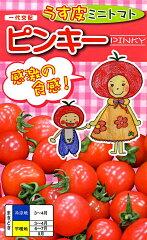 【ナント種苗】ミニトマト ピンキー【春まき】