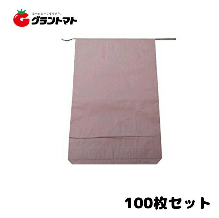 米袋 30kg 100枚 3重構造