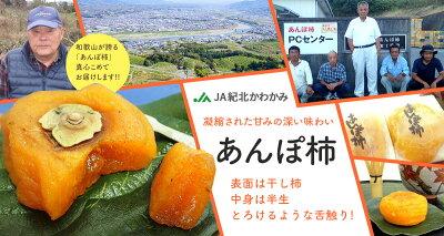 あんぽ柿(紀北かわかみ)