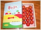 【夢とまと】フルーツトマト1.2kg箱
