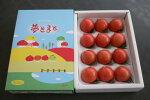 【夢とまと】フルーツトマト600g箱