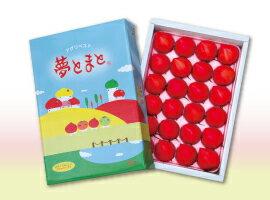 【夢とまと】フルーツトマト600g箱(1月以降出荷開始予定です)
