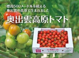 奥出雲高原トマト3kg箱島根県産ミディトマト