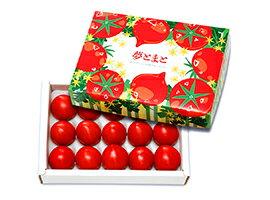 【夢とまと】フルーツトマト600g箱(12月下旬〜5月中旬頃出荷開始予定です)