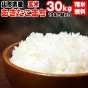 米 玄米 30kg あきたこまち 10kg×3袋 令和2年産 山形県産 精米無料 白米 無洗米 分づき 当日精米 送料無料