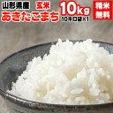 新米 米 玄米 10kg あきたこまち 10kg×1袋 令和3年産 山形県産 精米無料 白米 無洗米 分づき 当日精米 送料無料
