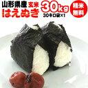 【送料無料】令和元年度産 山形県産 お米はえぬき 玄米 30kg(30kg×1袋)【白米・無洗米・分づき】