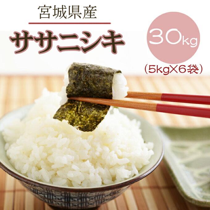 米 玄米 30kg ササニシキ 5kg×6袋 令和2年産 宮城県産 精米無料 白米 無洗米 分づき 当日精米 送料無料