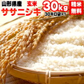 平成30年産山形県産ササニシキ玄米30kg