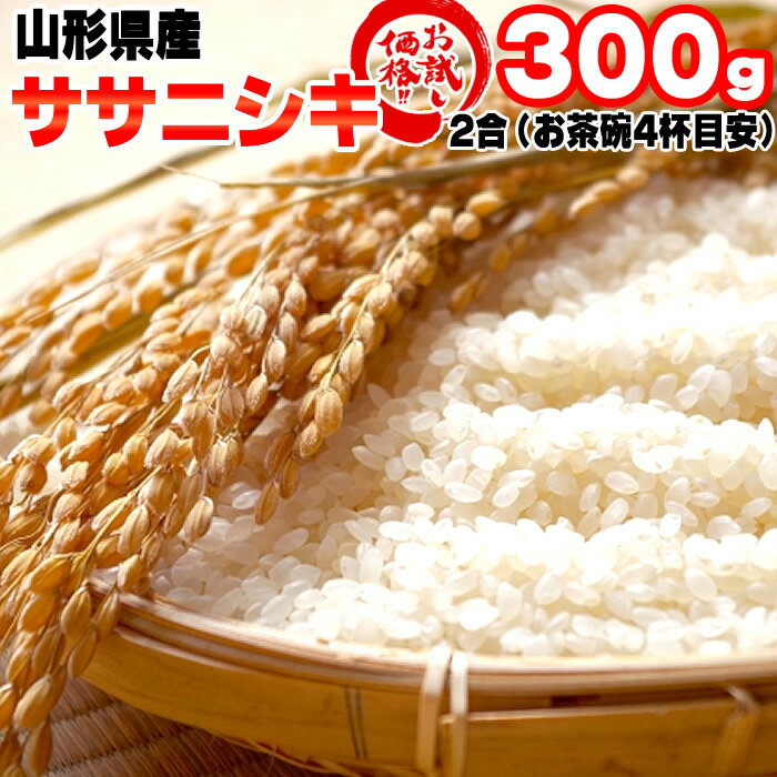 新米 米 お米 ササニシキ 2合 300g 令和元年産 山形県産 白米 無洗米 分づき 玄米 お好み精米 送料無料 当日精米 お試し ポイント消化 真空パック メール便