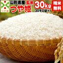 米 玄米 30kg つや姫 30kg×1袋 令和2年産 山形県産 精米無料 白米 無洗米 分づき 当日精米 送料無料 1