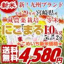 新米【29年産】にこまる お米 10kg(白米 5kg×2) 宮崎県産(産地直送)