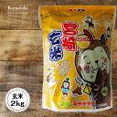 30年産 宮崎県産ひのひかり 玄米 2kg(2kg×1袋)(...