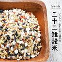 雑穀 雑穀米 送料無料 お米屋厳選の22雑穀米 たっぷり660g(30g×22袋入り)
