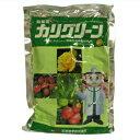 【農薬】カリグリーン水溶剤 500g【園芸用 殺菌剤】